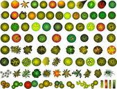 A set of treetop symbols — Stock Vector