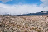 Montanhas e o deserto — Foto Stock