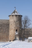Vorotnaja tower. An Ivangorod fortress. — Stock Photo