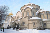 Winter in the New maiden monastery. — Stockfoto