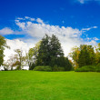 Park landscape - Stock Photo