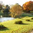 Beautiful autumn park — Stock Photo #4221682