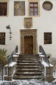 Gothic door portal — Stock Photo