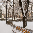 Urban park in winter — Stock Photo