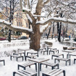 Snow in the park - Lizenzfreies Foto
