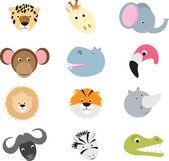 Conjunto de animais dos desenhos animados cute safari selvagem — Vetorial Stock