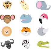 Cute wild safari animal cartoon set — Vecteur