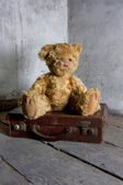 Teddy bear on suitcase — Stock Photo