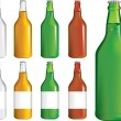Set of beer bottles — Stock Vector
