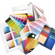 Foto Stock: Graphic or interior designer colour swatches