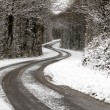 snowy road — Stock Photo