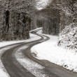 Stock Photo: Snowy Road