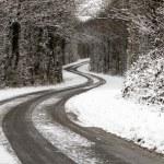 Snowy Road — Stock Photo #4722237