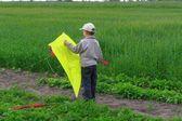 Boy flying a kit — Stock Photo
