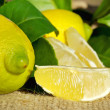 Mature lemons and slices. — Stock Photo