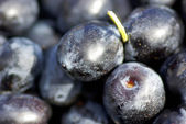Black olives . — Stock Photo