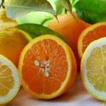 Orange and lemon slices. — Stock Photo