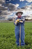 Bonde porträtt med hö fält — Stockfoto