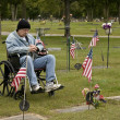 Disabled american veteran - Stock Photo