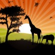 African safari sunset - Stock Photo