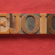 Stock Photo: Rejoice word on red