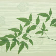 Heavenly bamboo — Stock Photo