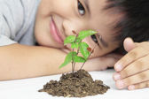 Growth concept with small plant — Stock Photo