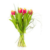 Bouquet of the fresh tulips — Stock Photo