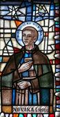 Saint Stanislaus Kostka — ストック写真