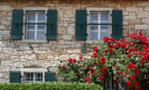 Typical country house villa in Istria, Croatia. — Stock Photo