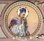 святого иоанна непомуцкого — Стоковое фото