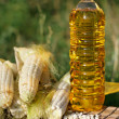 Oil and corn — Foto Stock