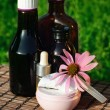 Echinacea alternative medicine — Stock Photo