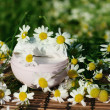 Cream with daisies — Stock Photo