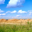 Field with straw bales — Stock Photo