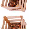 Crates with flower bulbs — Stock Photo