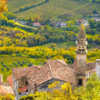 Motovun — Stock Photo