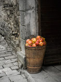 Stone and apples — Stock Photo