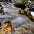 Stock Photo: Alpine stream