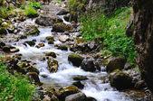 Alpine stream — Stock Photo