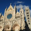 The facade of the Cathefral of Siena — Stock Photo