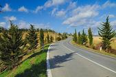 The road of Chianti (Tuscany).jpg — Foto Stock