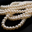 Stock Photo: Pearl beads