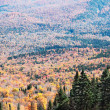 Fall Season in Mont-Tremblant, Quebec, Canada — Stock Photo