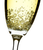 Champagne flute closeup — Stock Photo