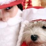 Święty Mikołaj — Zdjęcie stockowe #4278274