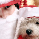 Santa claus — Stock fotografie #4278274
