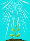 зелёное растение — Cтоковый вектор