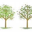 Two summer trees — Stock Vector