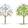 Cherry trees — Stock Vector